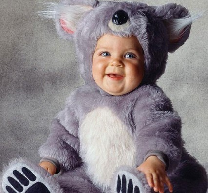 koala bear baby halloween costumes for kids