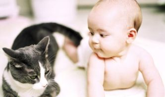 newborn baby and cat