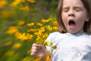 Avoid Allergies in Kids