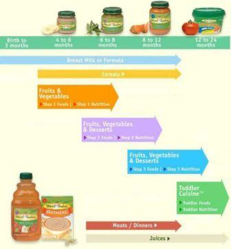 Introduction of Baby Food Chart