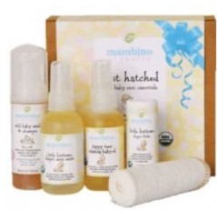 Organic Baby Shower Gift Ideas